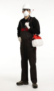 pest control services will do a good job once