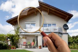 looking for pest control companies that will perform real estate inspections