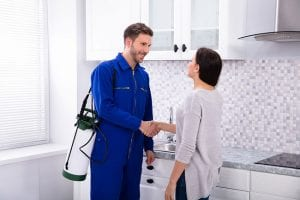 professional pest control companies are more likely to have the expertise you need to eradicate your pest problems