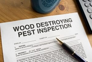 Don't Buy a Property Without Learning About Real Estate Inspections